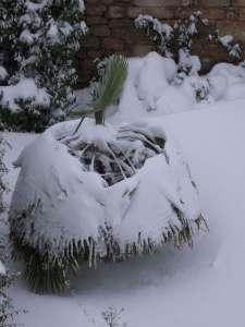 site dekoninckferey mon igloo 13 mars 2013
